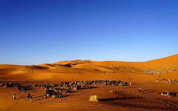 Desert 10 1
