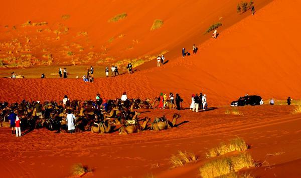 Desert 13 1