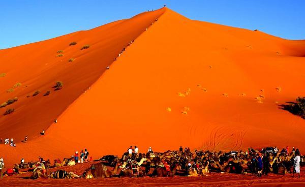 Desert 16 1